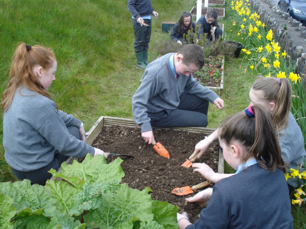 School Garden – Carrickleck National School